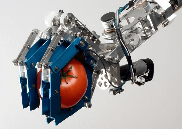 Robotics and creativity can go hand in hand.